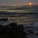 Sunset Wave - Casa Beach, CA by Anna Lisa Yoder