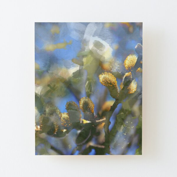 Springtime willow branch Wood Mounted Print
