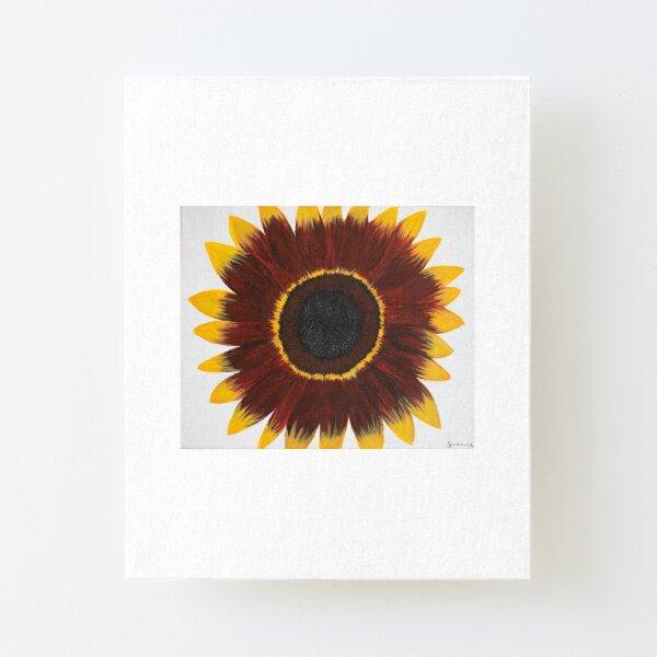 Sunflower Power #2 Canvas Mounted Print