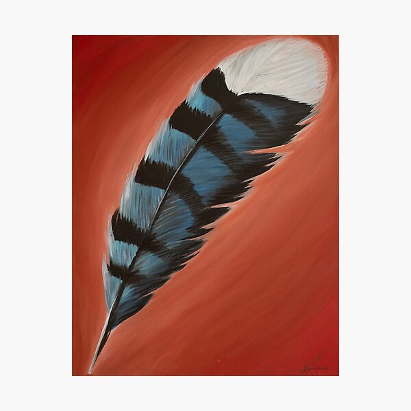 Blue Jay Feather #1 Photographic Print