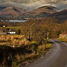 Views towards Windermere by Shaun Whiteman