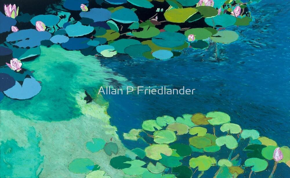 MoonLight Shadows by Allan P Friedlander