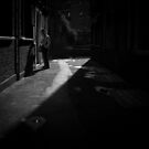 light by Tony Day