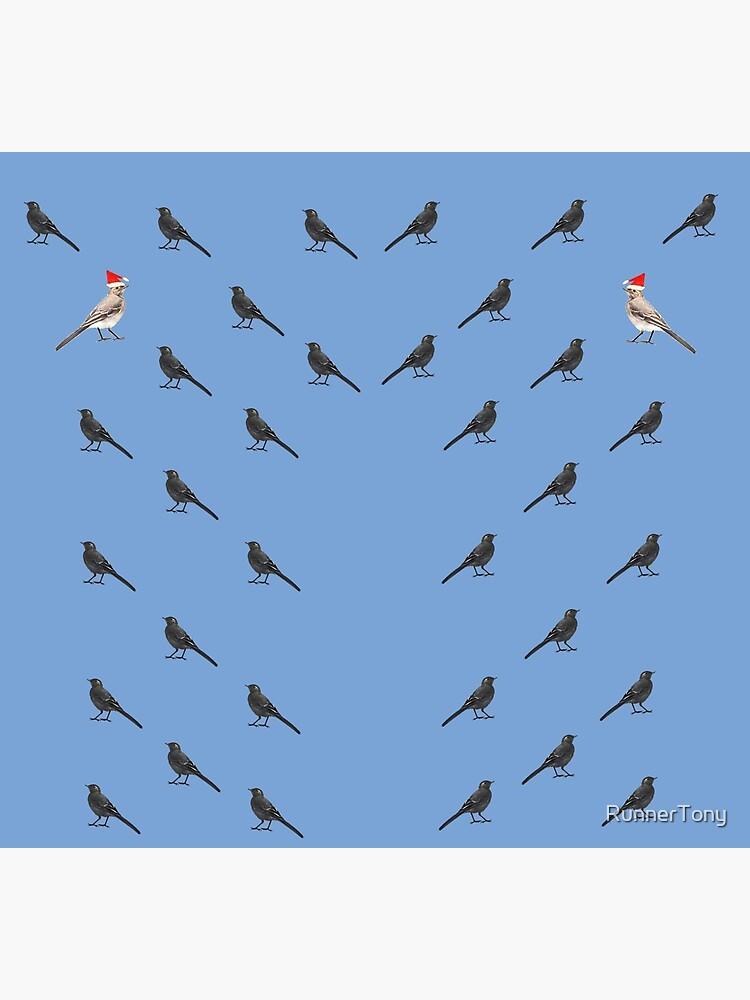 Christmas in the bird town by RunnerTony