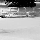 A Bridge of Frozen Water............... by Larry Llewellyn