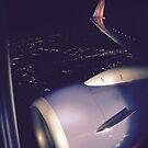 Flying into Houston by DeBorah Davis, LMT