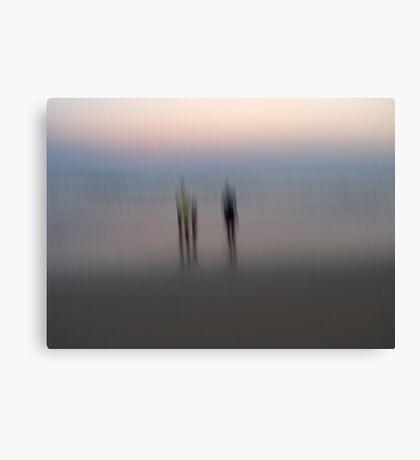 Stillness and Motion Canvas Print