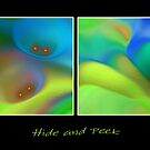 Hide and Peek (abstract)  by CarolM