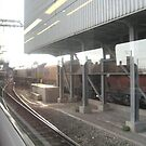 Sidings 3 (outside St Pancreas March 2011) by fatchickengirl
