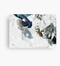 Darn Mammals Canvas Print