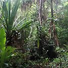 Jungle at the Sago patch by Reef Ecoimages
