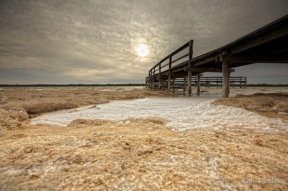 The Foam Phenomenon - Lake Clifton WA by Chris Paddick