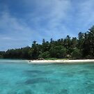 Gudaraba Island by Reef Ecoimages