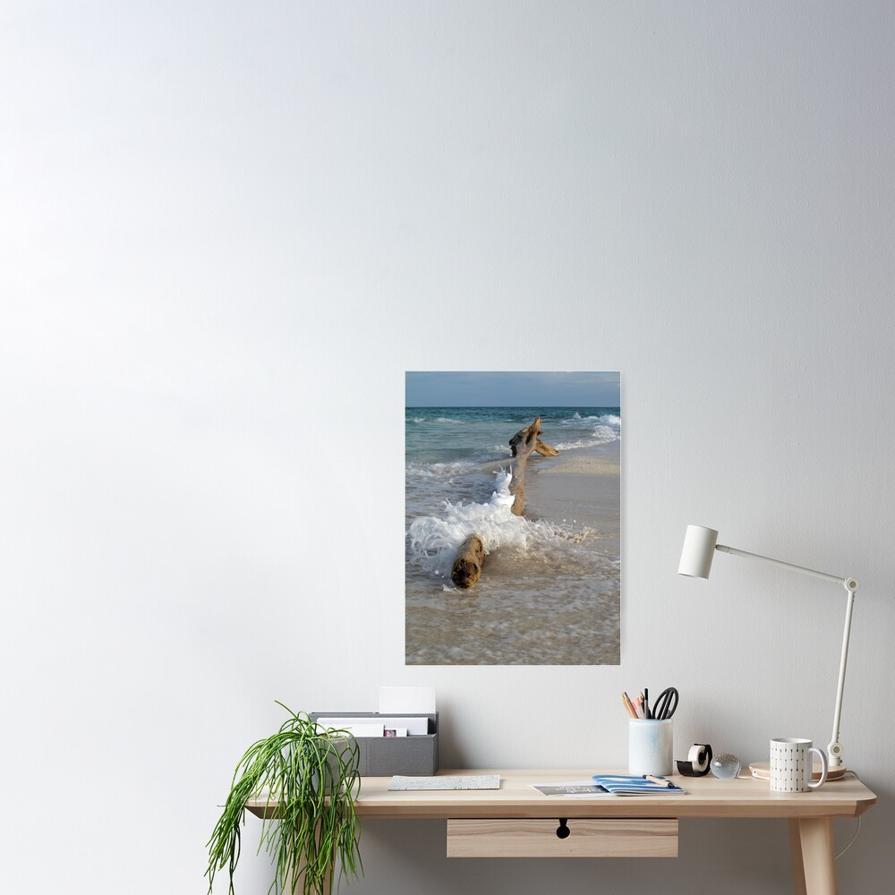 Driftwood and Wave Poster