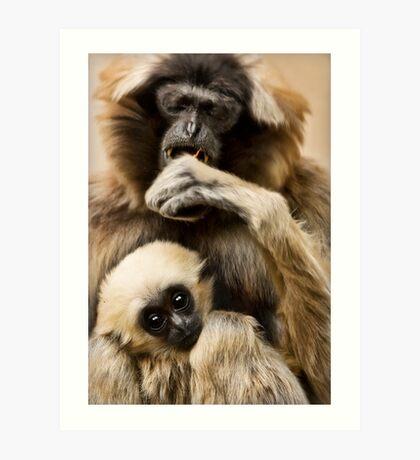 Pileated Gibbon Art Print