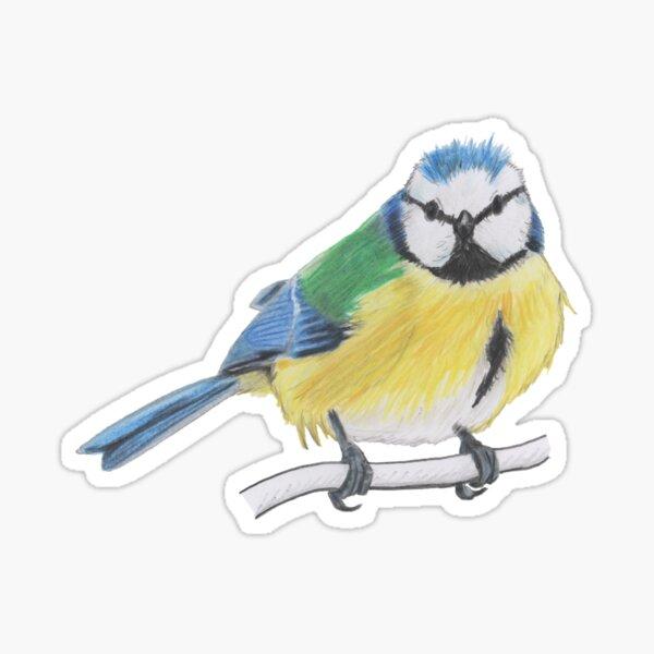 Bluetit 2/4 Sticker