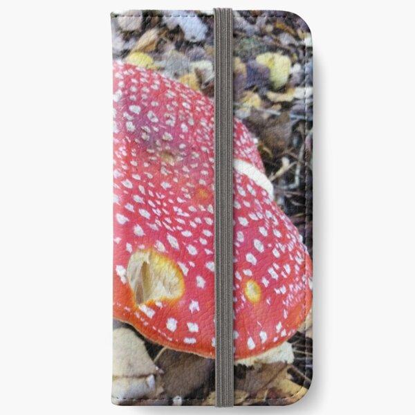 Fairytale Mushroom iPhone Wallet