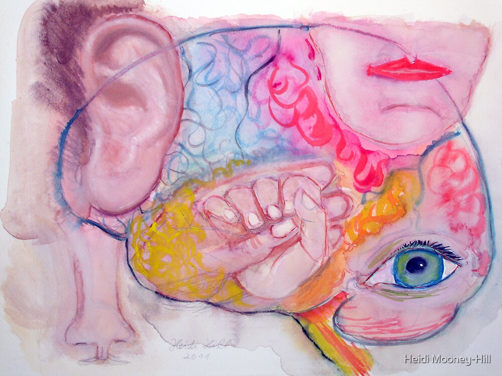 THE  HUMAN  BRAIN by Heidi Mooney-Hill