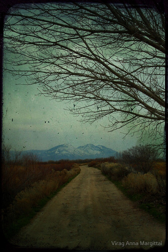 dirt road by Virag Anna Margittai