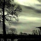 Urbarizon - The Pond by GlennB