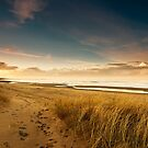 Dunes by james  thow