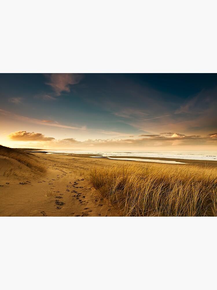 Dunes by tontoshorse