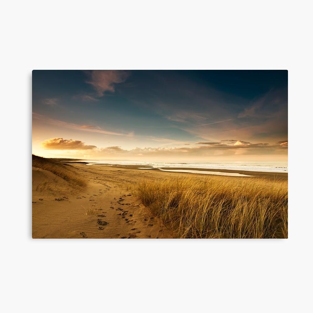 Dunes Canvas Print