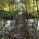 Swinging Bridge~ by virginian