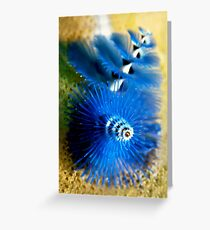 Christmas Tree Worm Greeting Card