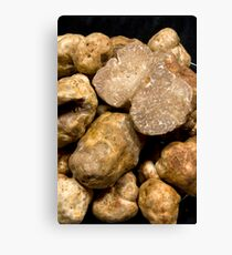 Oregon White Truffles # 3 Canvas Print