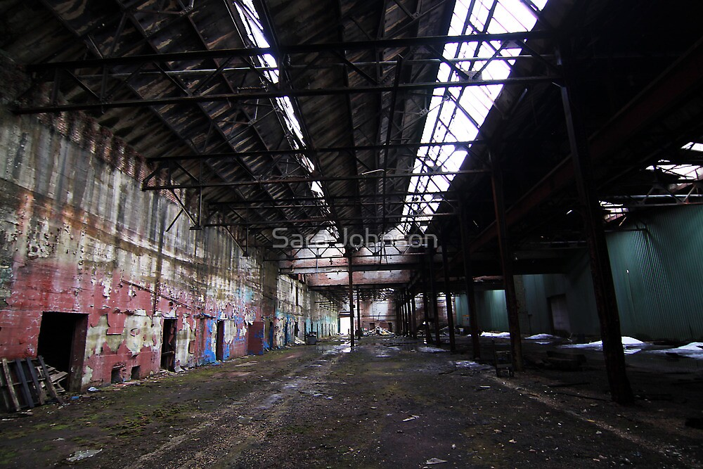 The Abandoned by Sara Johnson