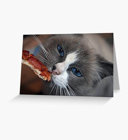 """Does Your Kitty Love Pizza Too ?"" Greeting Card"