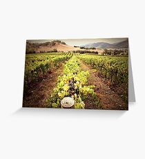 A Mudgee Vineyard Greeting Card