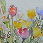 Spring: mixed flowers by Peter Taylor