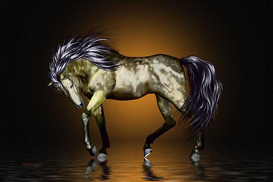 Metalica .. golden stallion  by LoneAngel