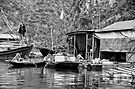 Vietnam: Halong Bay Floating Villages by Kasia-D