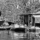 Vietnam: Halong Bay Floating Villages by Kasia-D