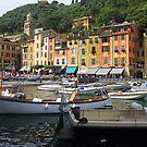Portofino Italy by Neville Gafen