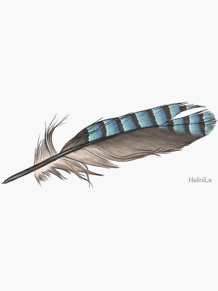 Garrulus Jay Bird Feather Illustration by NaliniLe