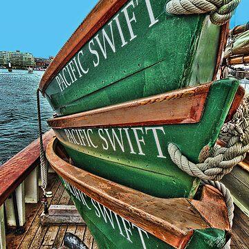•●♥Ƹ̵̡Ӝ̵̨̄Ʒ♥●•٠·˙●•٠· Pacific Swift •●♥Ƹ̵̡Ӝ̵̨̄Ʒ♥●•٠·˙●•٠·  by Rapture777