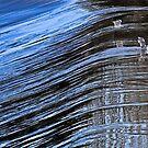 Upstream Flight by Richard Earl