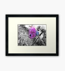 Spine System Framed Print