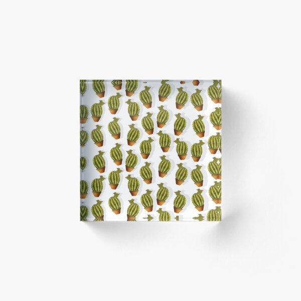 Mini cactus  Bloque acrílico