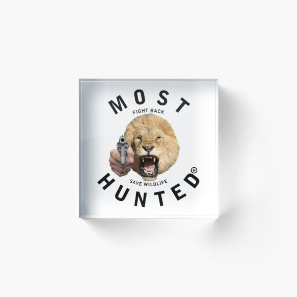 MOST HUNTED REAL LION HEAD SAVE WILDLIFE Acrylic Block