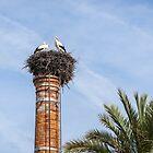 Bringing Babies - White Storks Nesting on a Tall Brick Chimney Above the Treetops by Georgia Mizuleva