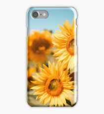 Yellow Sunflowers Macro iPhone Case/Skin