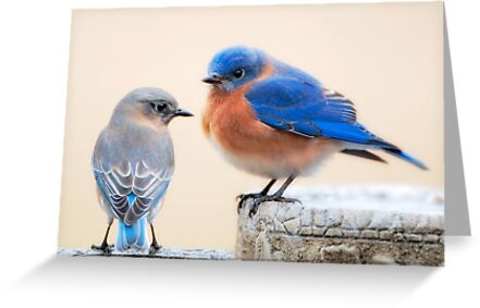 Cute Couple by Bonnie T.  Barry