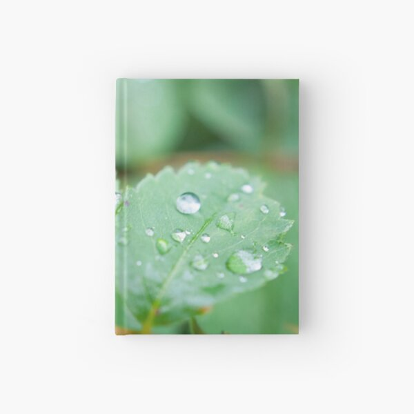 After the rainfall Hardcover Journal
