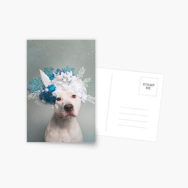 Flower Power, Polar Bear Postcard