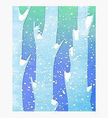 Wintery Trees Photographic Print